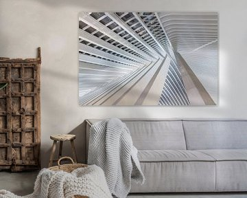 Liege-Guillemins abstract perspectief von Dennis van de Water
