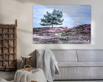 Heide in bloei van Jo Pixel