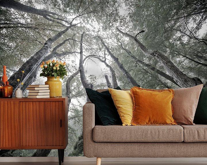 Sfeerimpressie behang: Mystieke bomen van Jacqueline Lemmens