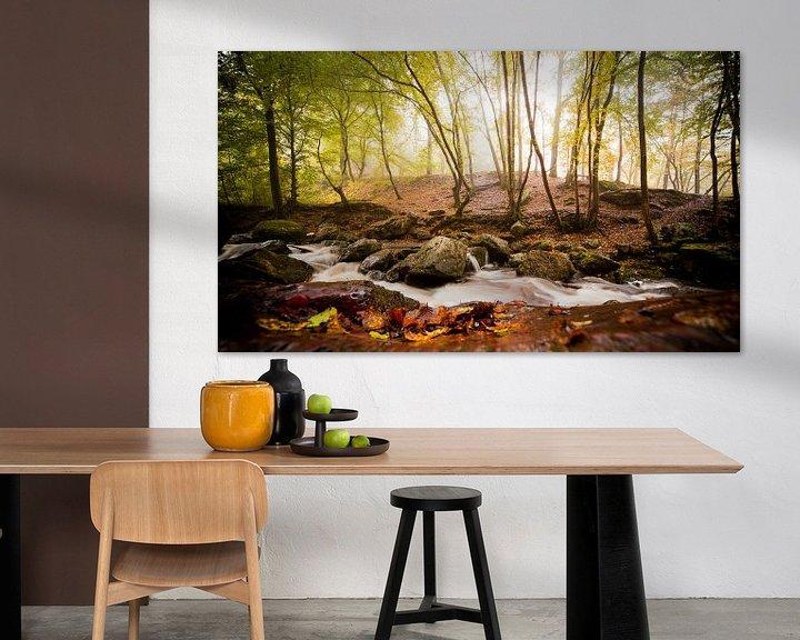 Sfeerimpressie: Mistig bos van Jacqueline Lemmens