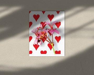 Valentijns bloem von Gerrit Neuteboom