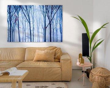 De eenzame berk in het winter bos
