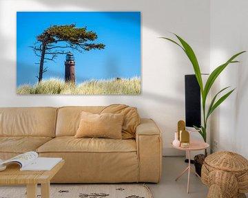 Leuchtturm Darßer Ort mit Baum von Rico Ködder