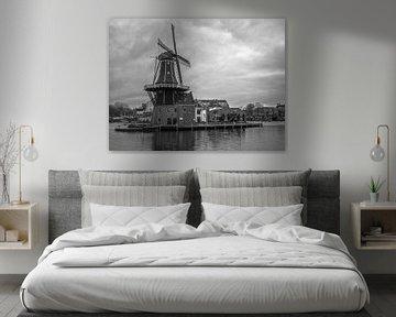 Moulin à Haarlem