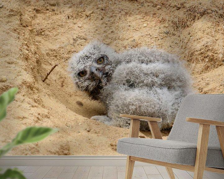 Sfeerimpressie behang: Eurasian Eagle Owl ( Bubo bubo ), very young chick, fallen out of its nesting burrow van wunderbare Erde