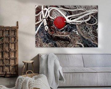 Boule Rouge sur Evert Jan Looise