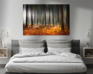 Geheimnisvoller Wald im Herbst