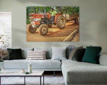 tractor Sri Lanka van Johan Vet