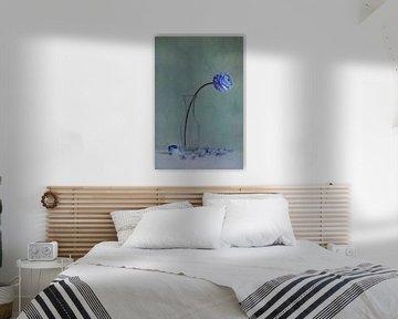 blauwe schoonheid van Claudia Moeckel