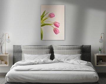 Rosa Tulpe im Blumenstrauß mit einfarbigem Hintergrund von Doris van Meggelen