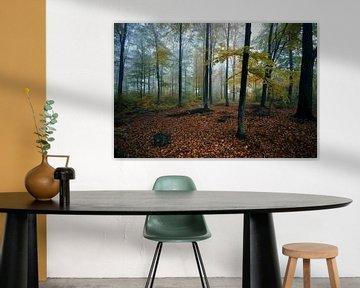 Landschap - Bos van Angelique Brunas