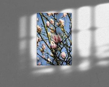 De lentekleuren von Petra Brouwer