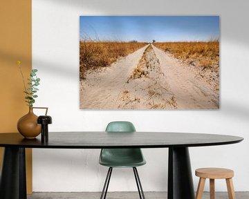 Le chemin de terre sans fin sur Jolene van den Berg