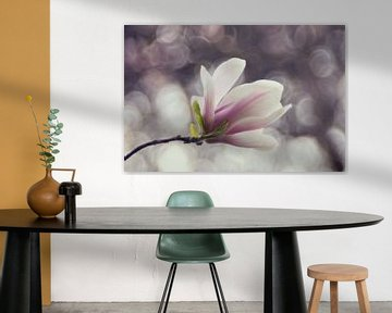 Macro - Magnolia von Angelique Brunas