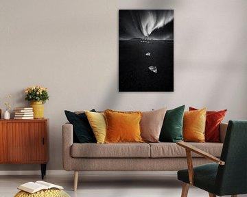 Lyra von Daniel Laan