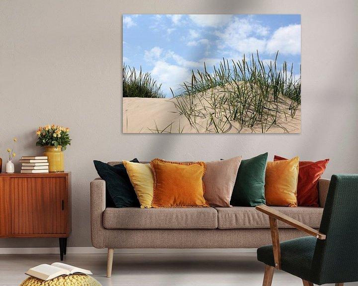 Beispiel: Strandhafer von Ostsee Bilder