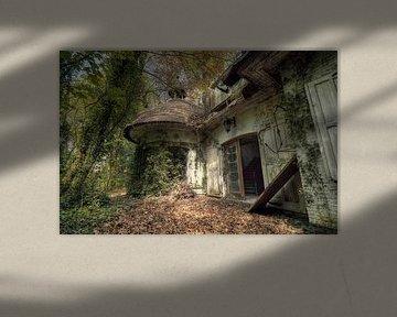 Urbex - Begroeide villa van Angelique Brunas
