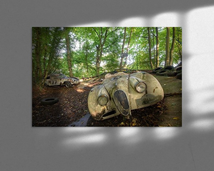 Sfeerimpressie: Abandoned in the woods van Henny Reumerman