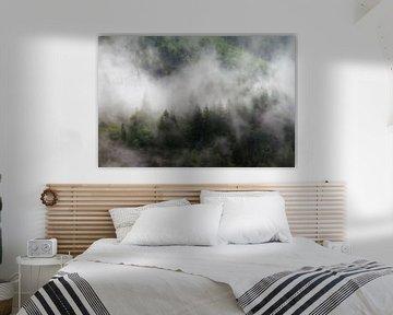 Mistige bomen in Zwitserland van Dennis van de Water