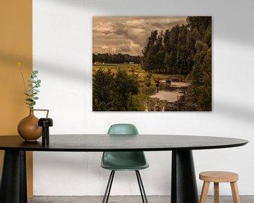 Dutch landscape 2