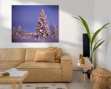 Winter in Finnland von Wiltrud Schwantz