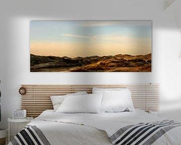 panoramic dune van claes touber