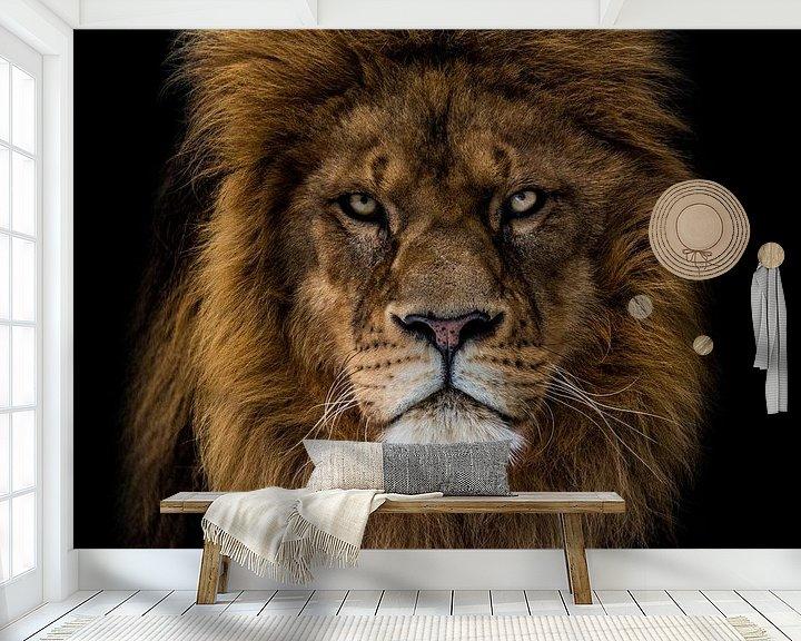 Beispiel fototapete: Der wütende Löwe sieht mich an von nathalie Peters Koopmans