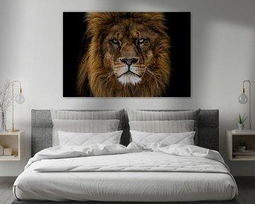 Der wütende Löwe sieht mich an von nathalie Peters Koopmans