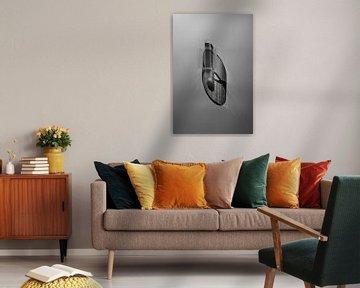 minimalistische zwart/wit foto von Anneloes van Dijk