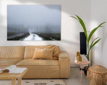 Lichtend pad in de mist van Wouter Bos