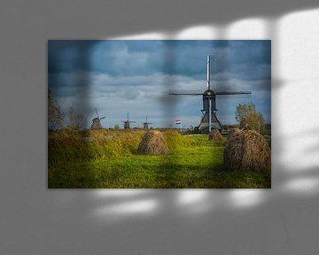 Blokweerse Windmühle in Kinderdijk. (Niederlande) von Adri Vollenhouw
