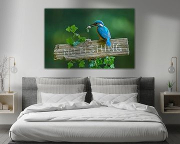 IJsvogel - No fishing! van IJsvogels.nl - Corné van Oosterhout