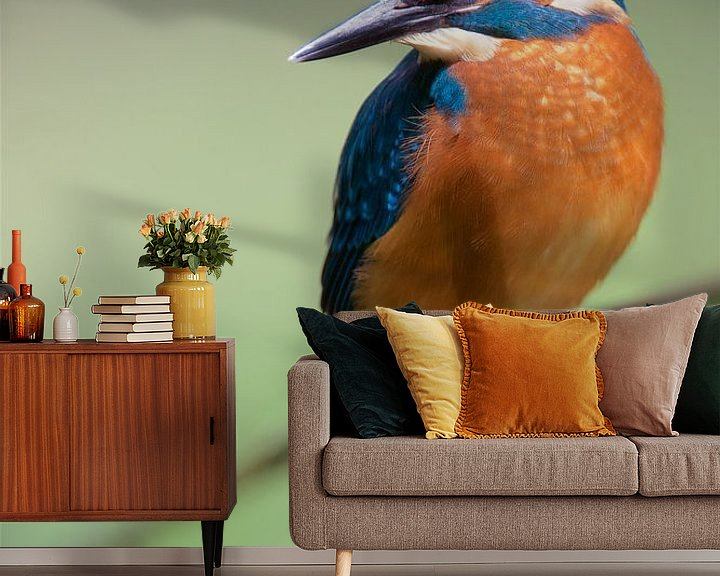 Sfeerimpressie behang: IJsvogel van IJsvogels.nl - Corné van Oosterhout
