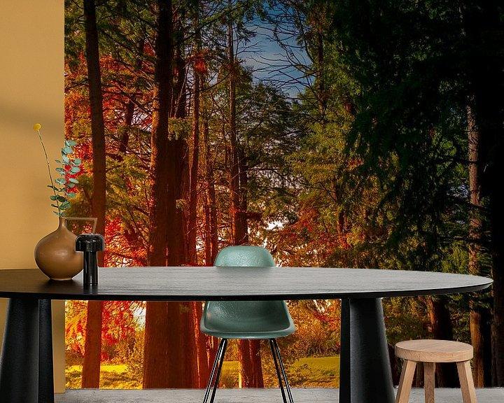 Sfeerimpressie behang: ochtendzon langs de bomenrij van mario vanparys