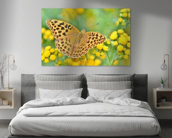 Sfeerimpressie: Vlinders van Carla Eekels