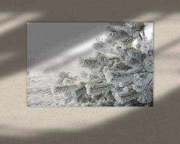 Winter van Alied Kreijkes-van De Belt