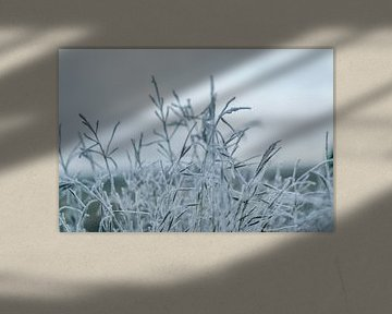 Ein gefrorener Morgen von WeLeaf (Zoë & Olivier)