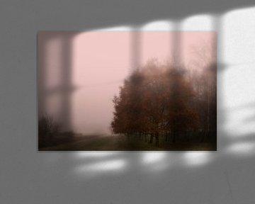 ochtend licht, morning light,Morgenlicht, lumière du matin van Hans Sluimer