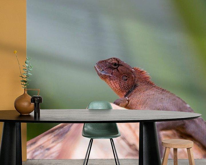 Beispiel fototapete: Orientalische Garteneidechse (Oriental garden lizard) von Thijs van den Broek