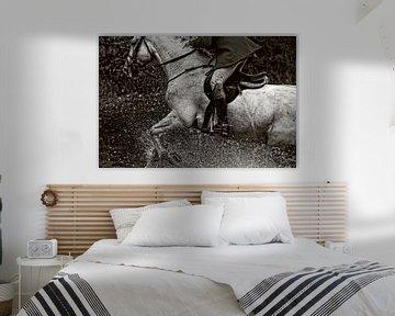 Horse in action von Wybrich Warns