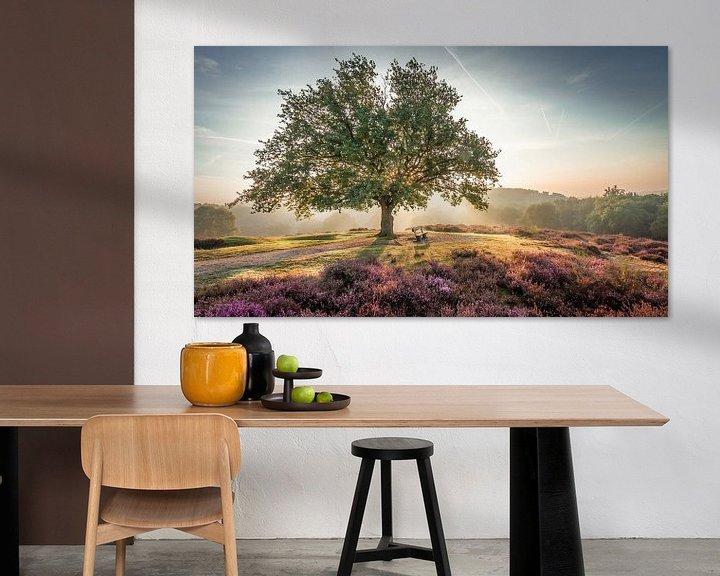 Sfeerimpressie: Stralende zon achter een boom op de paarse Mookerheide van Michel Seelen