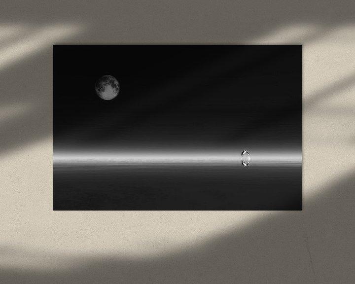 Sfeerimpressie: Dierenrijk – De dolfijn met de maan van Jan Keteleer