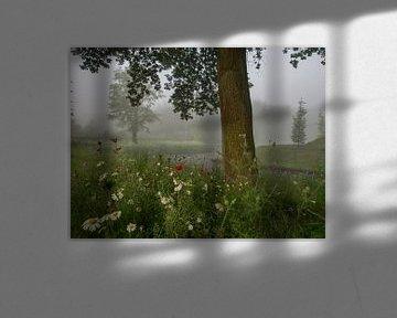 Brouillard, fleurs et un arbre sur Natascha Worseling