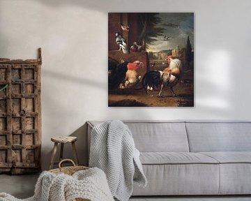 Een haan, een kalkoen en andere vogels, Melchior de Hondecoeter