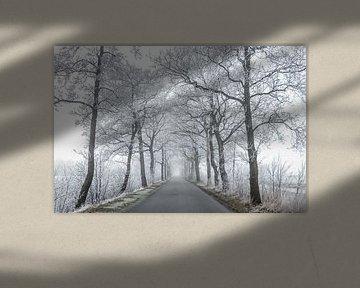Bevroren bomen van Jo Pixel
