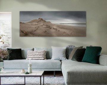 Panorama van Zeeuwse kust met duin en zee van Michel Seelen