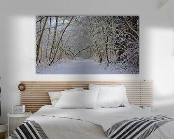 Pad door een besneeuwd winterbos