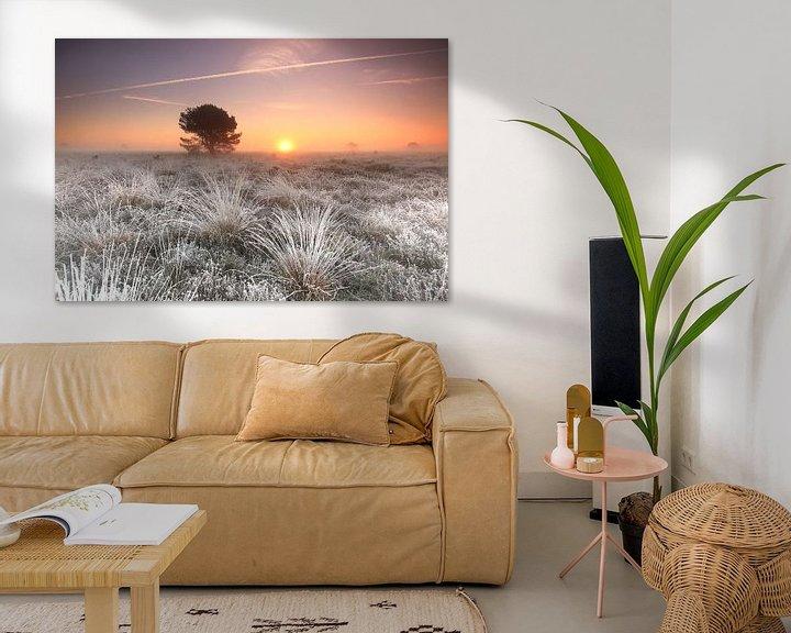 Sfeerimpressie: Houtdorperveld van Ron de Vries