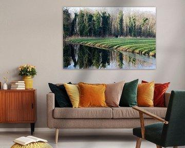 Spiegeling bij Landgoed Marquette von CreaBrig Fotografie