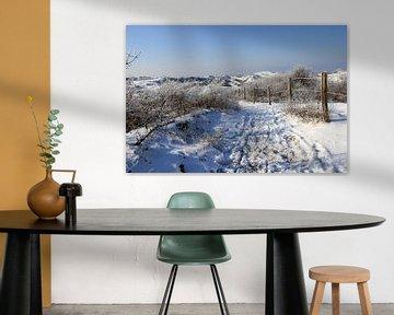 Winterdünen ... sur Bert - Photostreamkatwijk